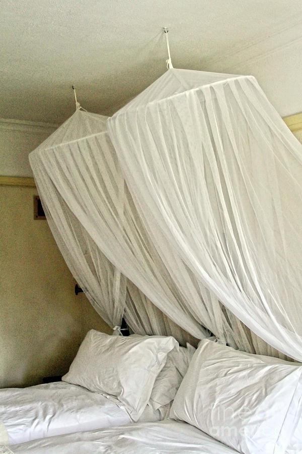 Victoria Falls Hotel Mosquito Nets Photograph