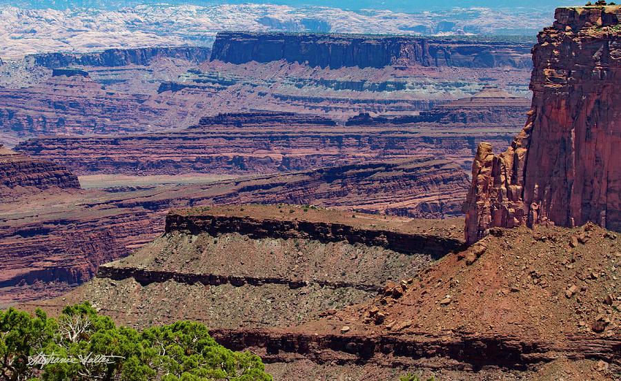 View #2 from Dead Horse Point by Stephanie Salter
