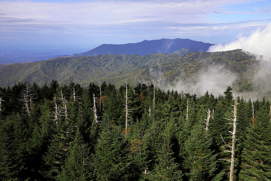 View From Clingman's Dome Observation Tower 1 Photograph ...