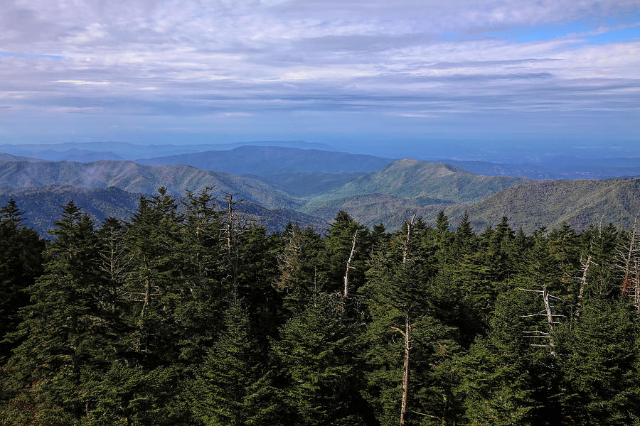 View From Clingmans Dome Observation Tower 2 Photograph