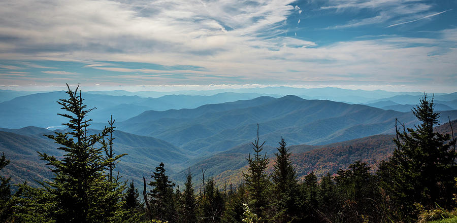 View from Clingman's Dome by Susie Weaver