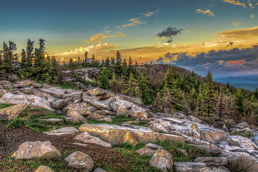 View from Dolly Sods 4714 by Donald Brown