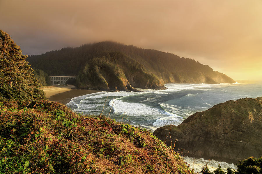 View From Heceta Head by James Eddy