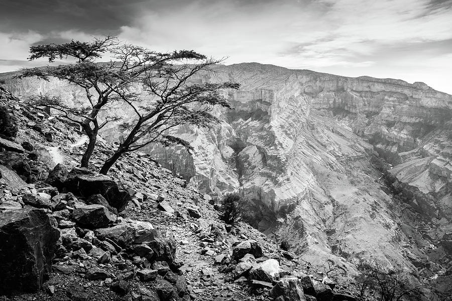 View From Jebel Shams Mountain In Oman Photograph