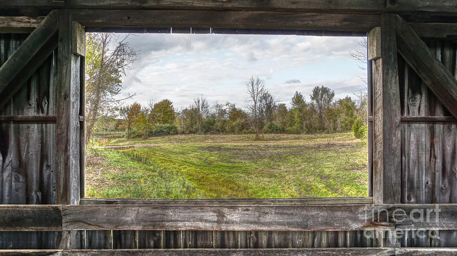 View into Ohio's Nature by Jeremy Lankford