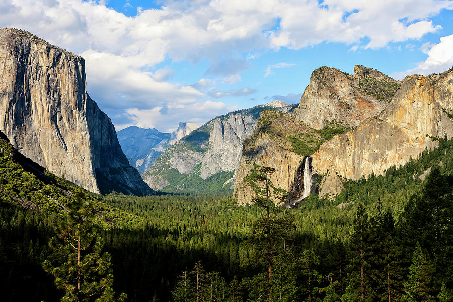 Scenic Photograph - View Of Bridalveil Falls, El Capitan by Danita Delimont