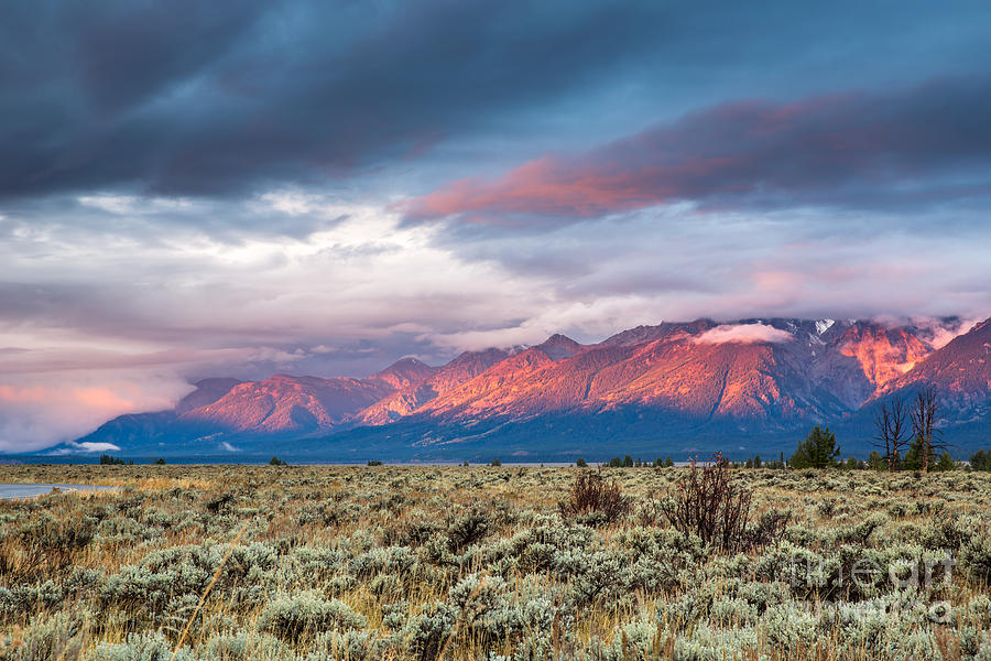 Sunrise Photograph - View Of Grand Teton Mountain Range At by Victor Maschek