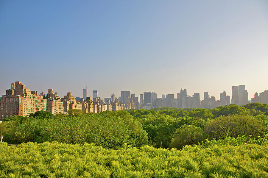 View Of Manhattans Central Park As Well Photograph by Barry Winiker