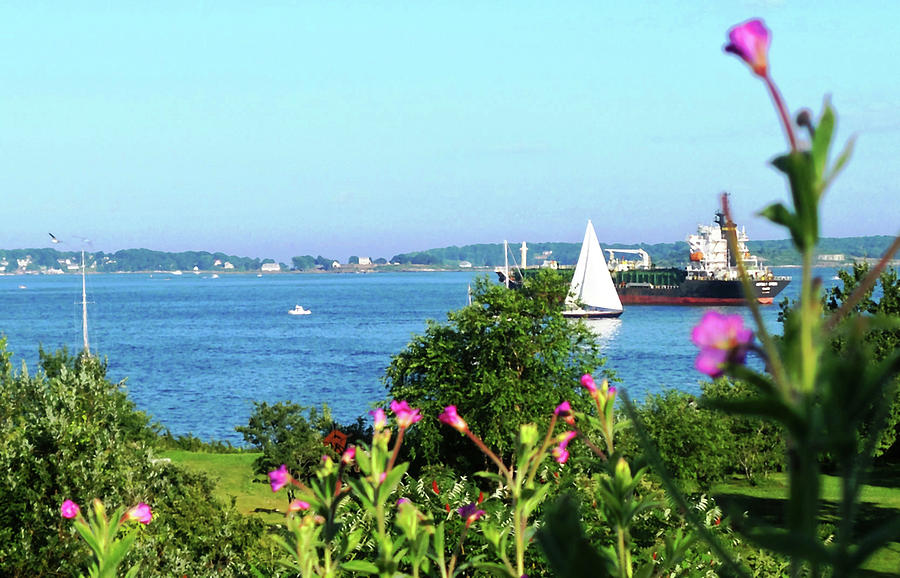 View Of Portland Harbor From Fort Allen Park Photograph