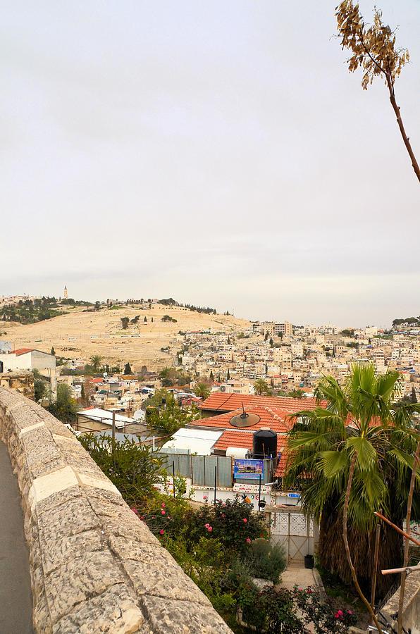 View of Silwan East Jerusalem by Alex Vishnevsky