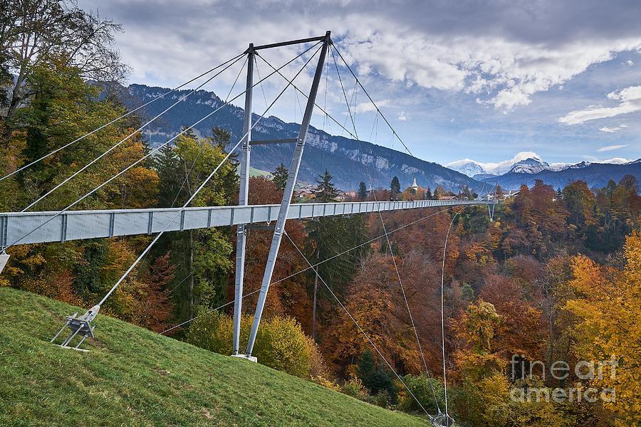 View Of Suspension Bridge Photograph by Nin Niniko / 500px