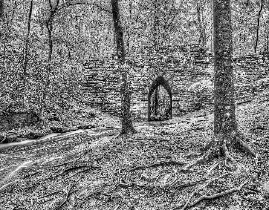 View of the Poinsett Bridge by Blaine Owens Photography