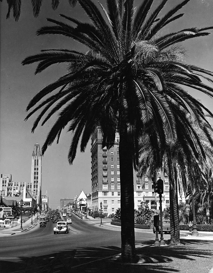 View Of Wilshire Boulevard, Los Angeles Photograph by R. Gates