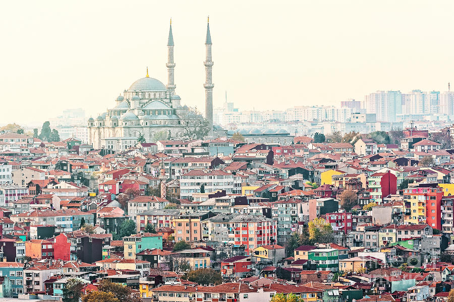 Crowd Photograph - View Over Istanbuls Dense Residential by Stefan Holm