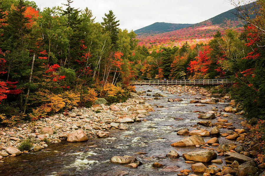 View up the Pemigewasset River by Jeff Folger