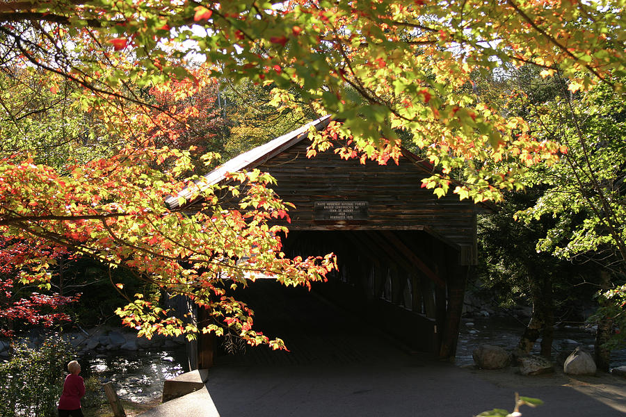 Viewing the Albany Covered Bridge by Jeff Folger