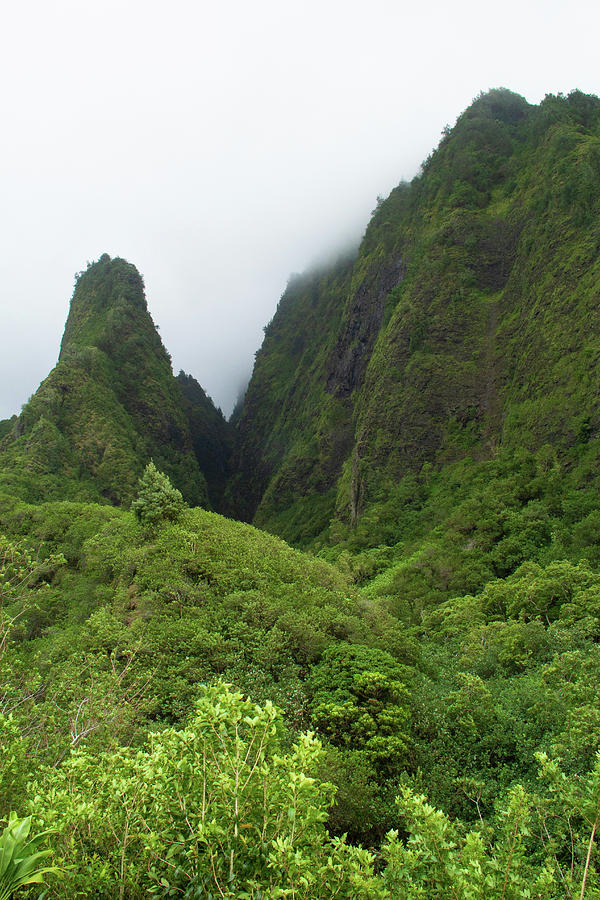 Views of Iao by Marie Leslie