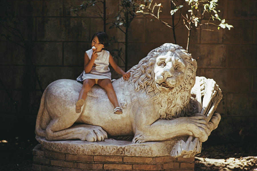 Villa Borghese Lion Photograph by Slim Aarons