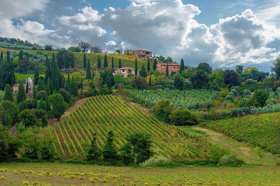 Villa Chianti by Fred Greco