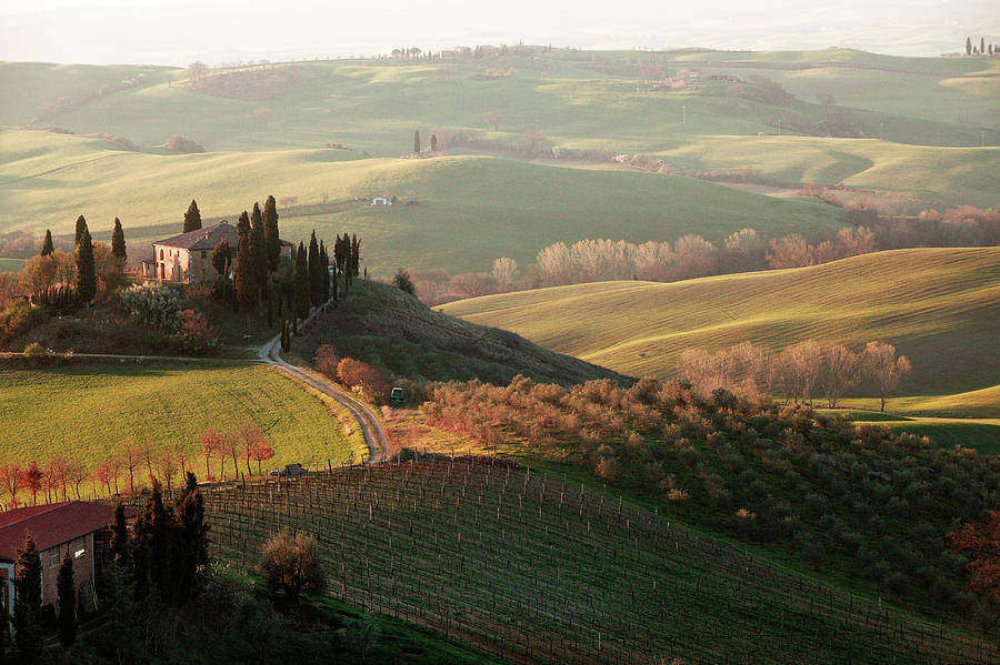 Villa In Tuscany Photograph by Dmitry Pisanko