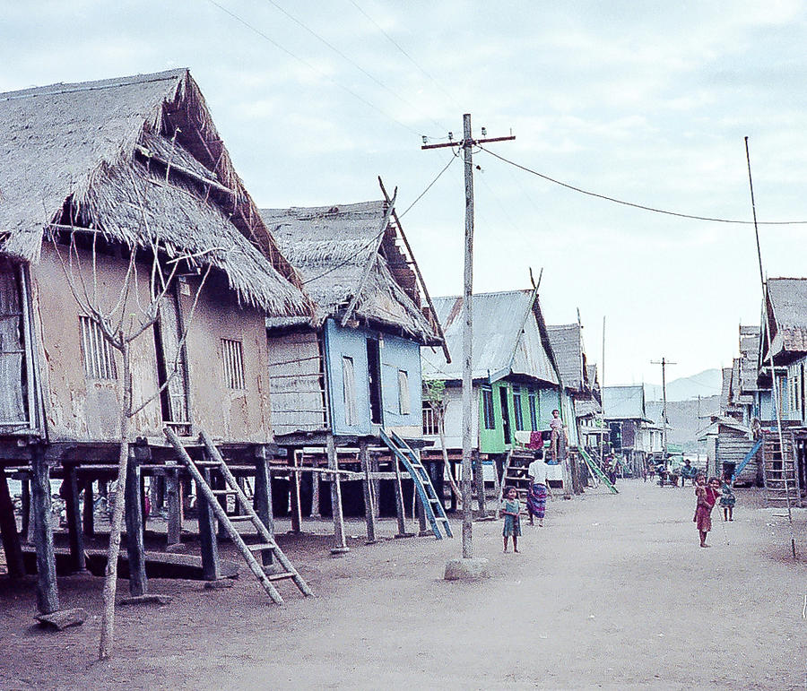 Village on Komodo Island by Pete Hendley