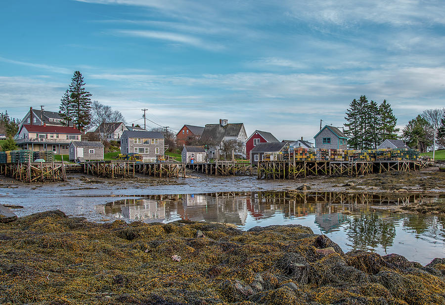 Village Reflections  by Tony Pushard