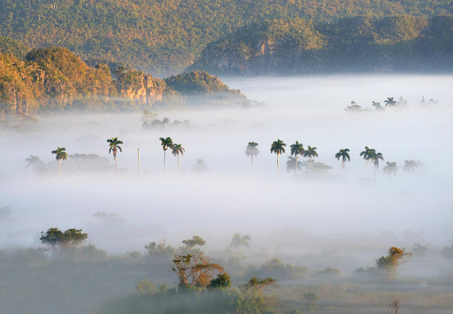 Vinales In Morning Mist Photograph by Tcyuen