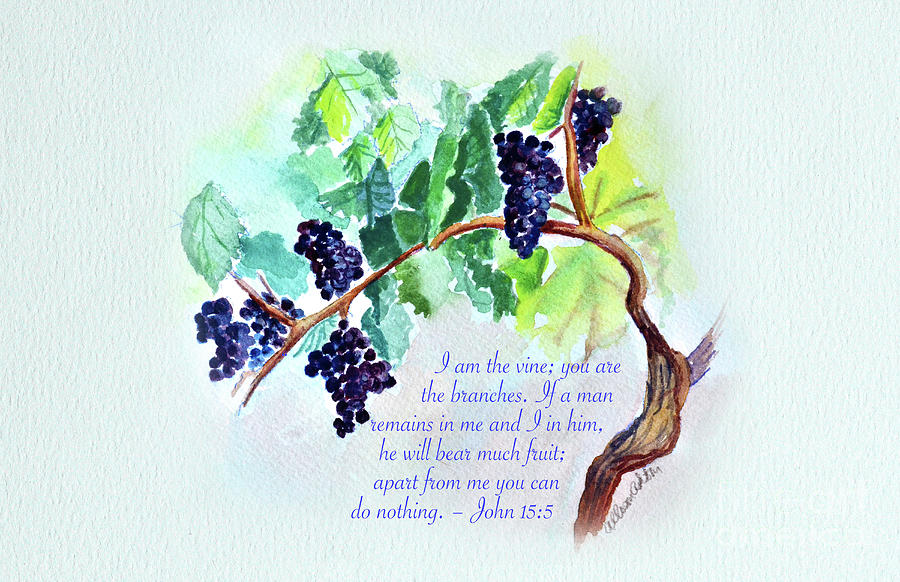 Vine And Branch With Scripture Painting