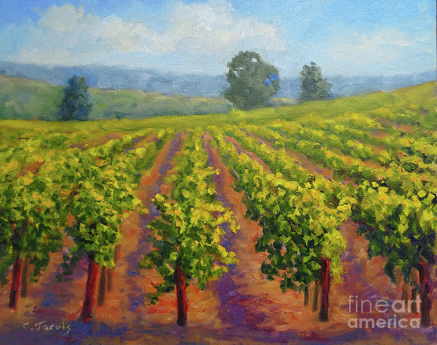 Vineyard in Springtime by Carolyn Jarvis