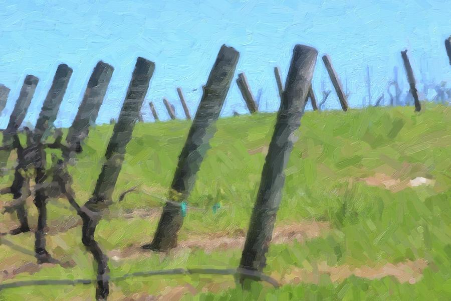 Vineyard Posts In Spring 2 by Cathy Lindsey