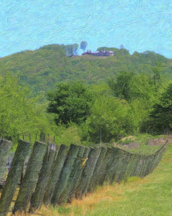 Vineyard Posts In Spring 8 by Cathy Lindsey
