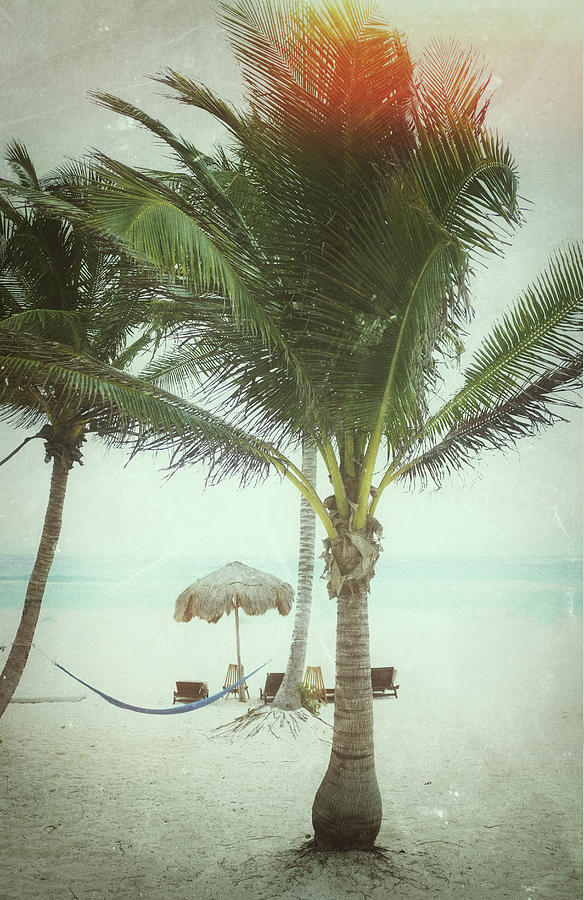 Vintage Beach Scene Photograph by Nathan  Blaney