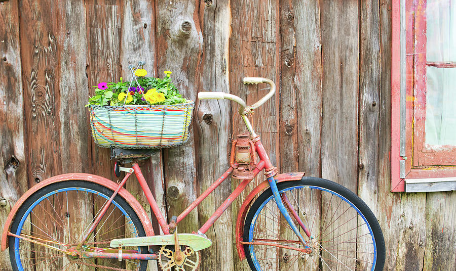 Old Photograph - Vintage Bicycles by Nick Mares