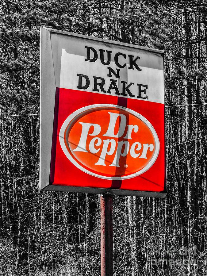 Vintage Duck And Drake Photograph