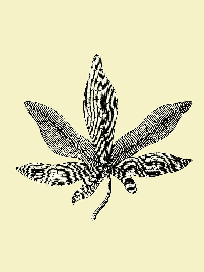 Leaf Mixed Media - Vintage Leaf by Naxart Studio