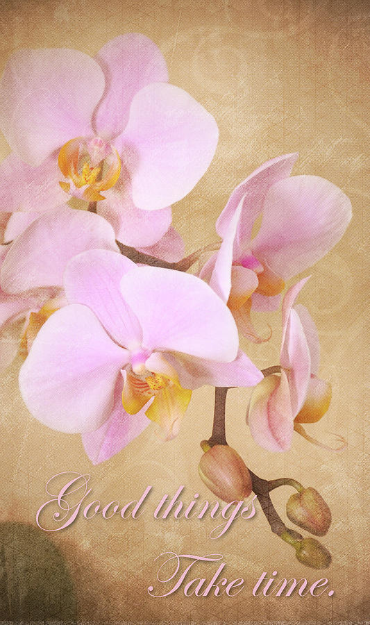 Vintage Orchids - Good Things, Take Time by Angie Tirado