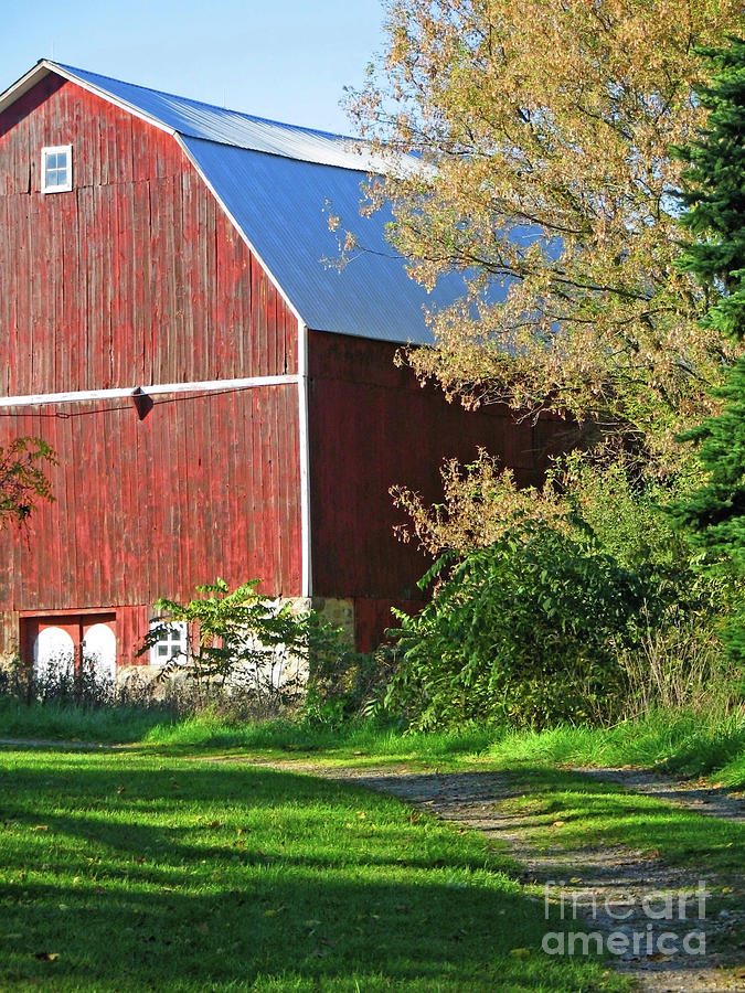 Vintage Red Barn by Ann Horn
