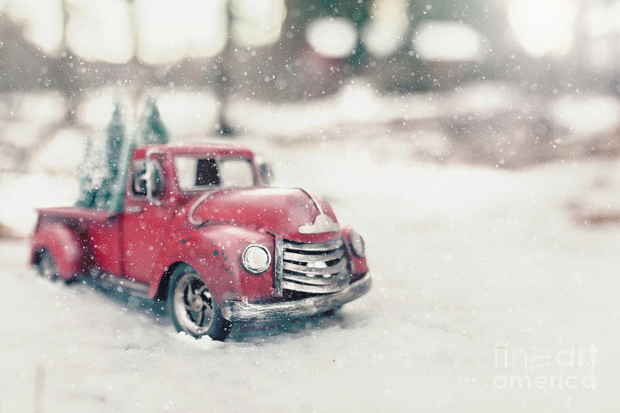 vintage red truck with christmas trees nancy hebert