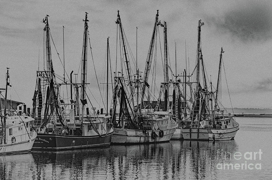 Vintage Saltwater Cowboys On Shem Creek Photograph