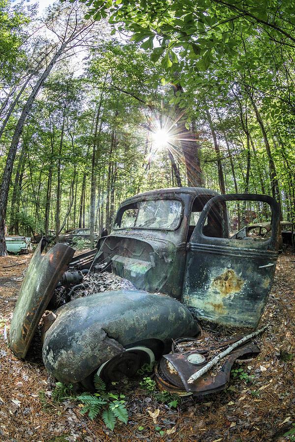 Vintage Under the Sun by Debra and Dave Vanderlaan