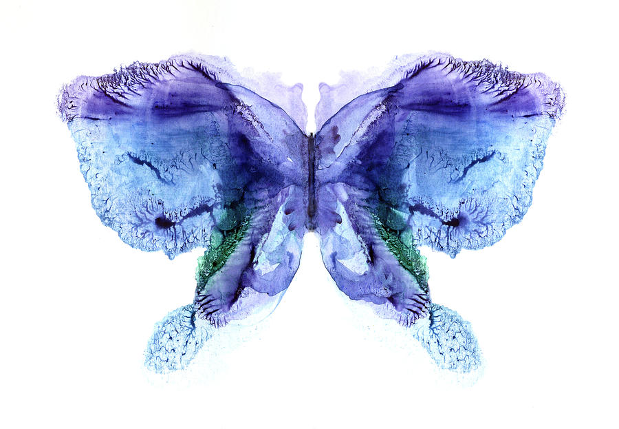 Violet - Blue Butterfly Digital Art by Pobytov