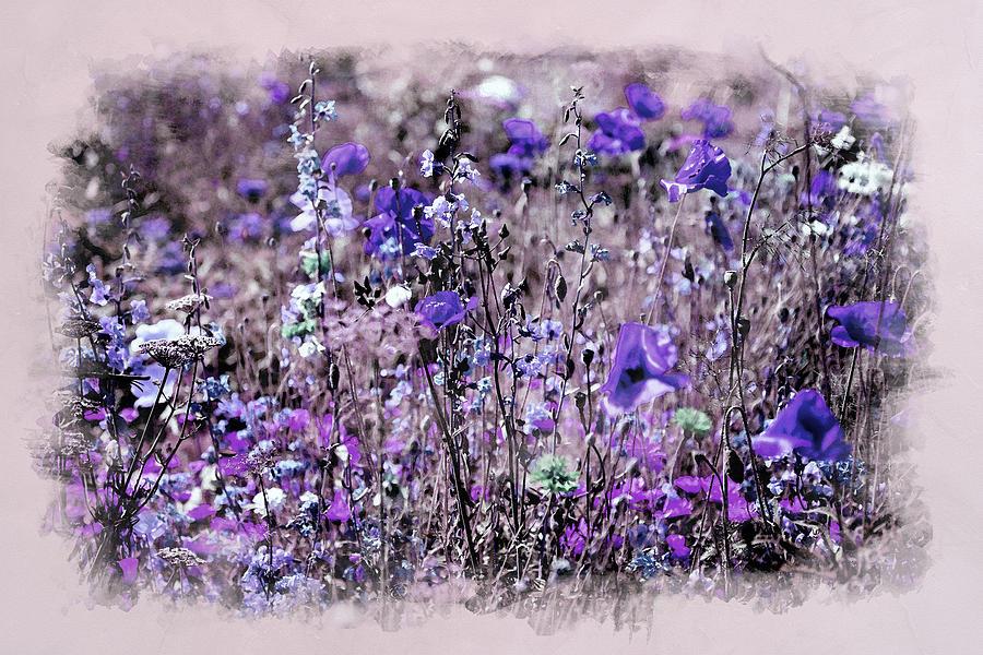 Violet Mood by Alex Mir