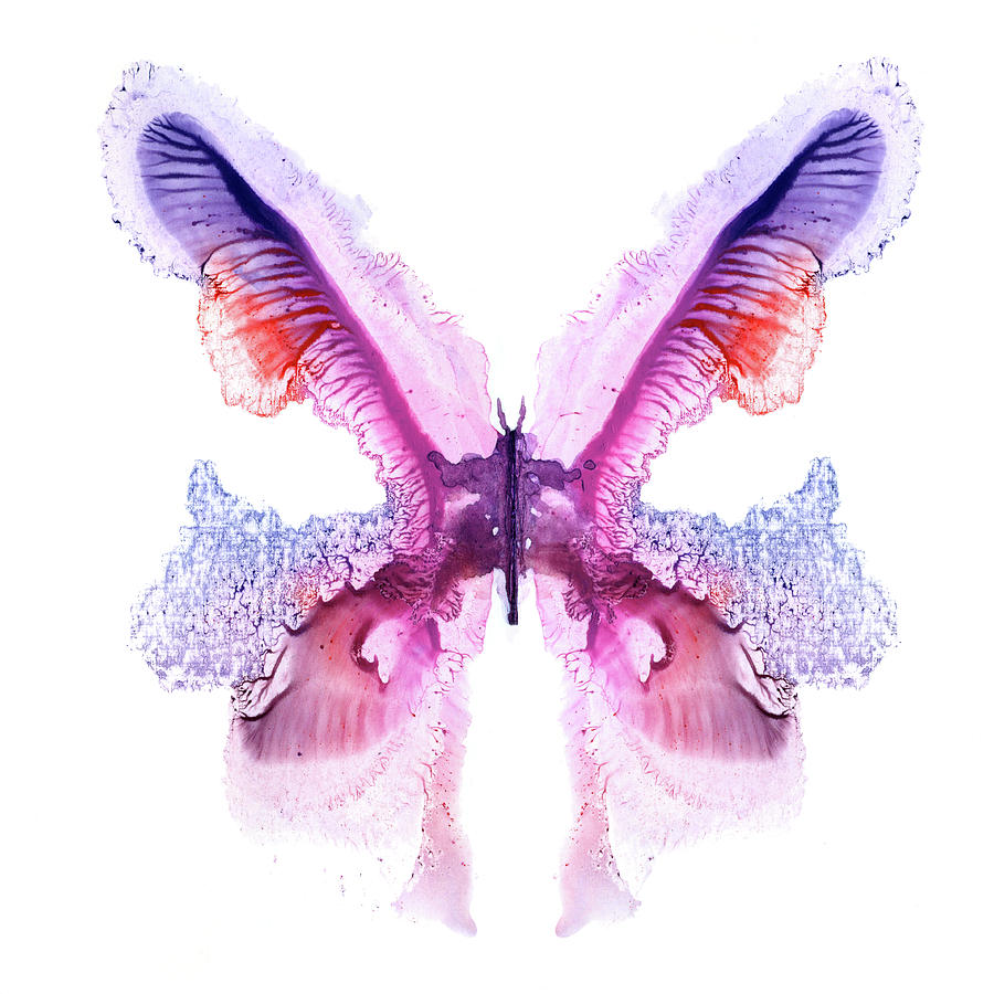 Violet Painted Butterfly Digital Art by Pobytov