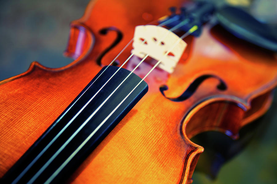 Violin Photograph by Sarah Beard Buckley