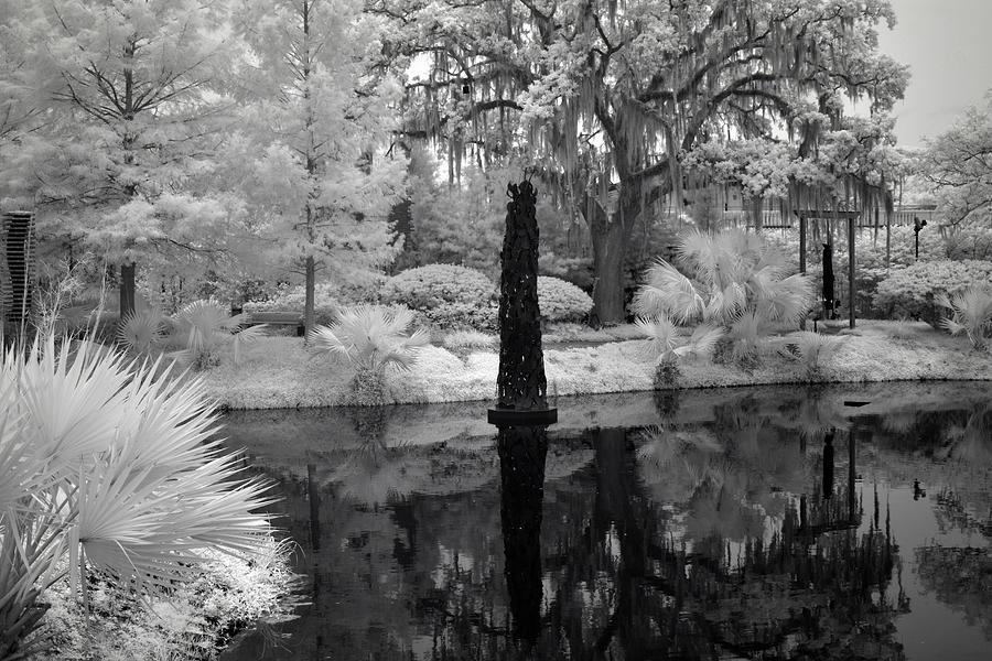 Violins Noma Besthoff Sculpture Garden City Park New Orleans 2019 In Infrared Photograph