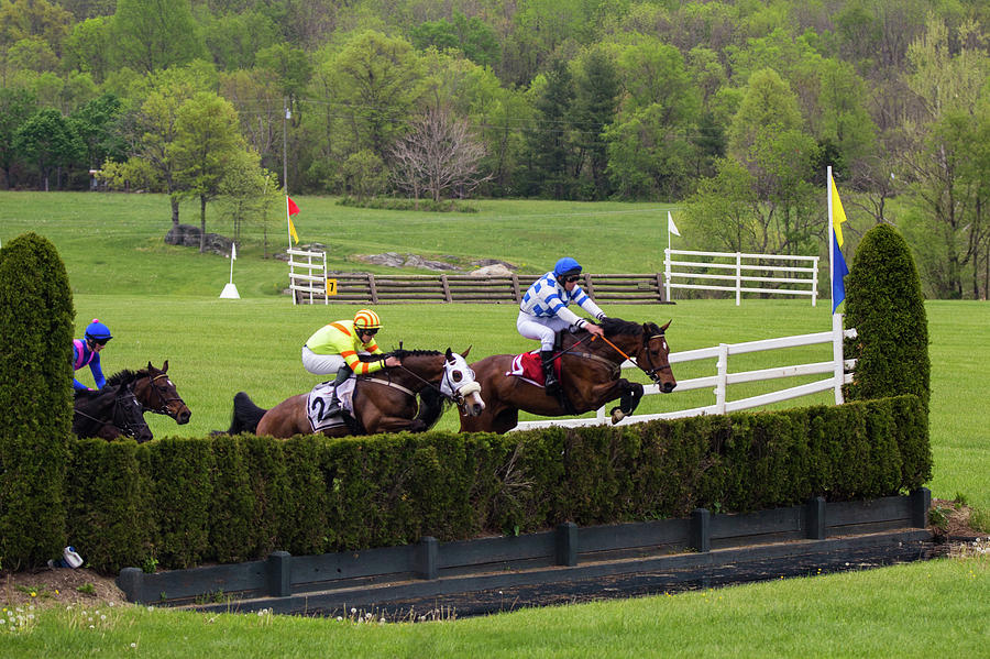 Virginia Gold Cup Photograph by Fred DeSousa