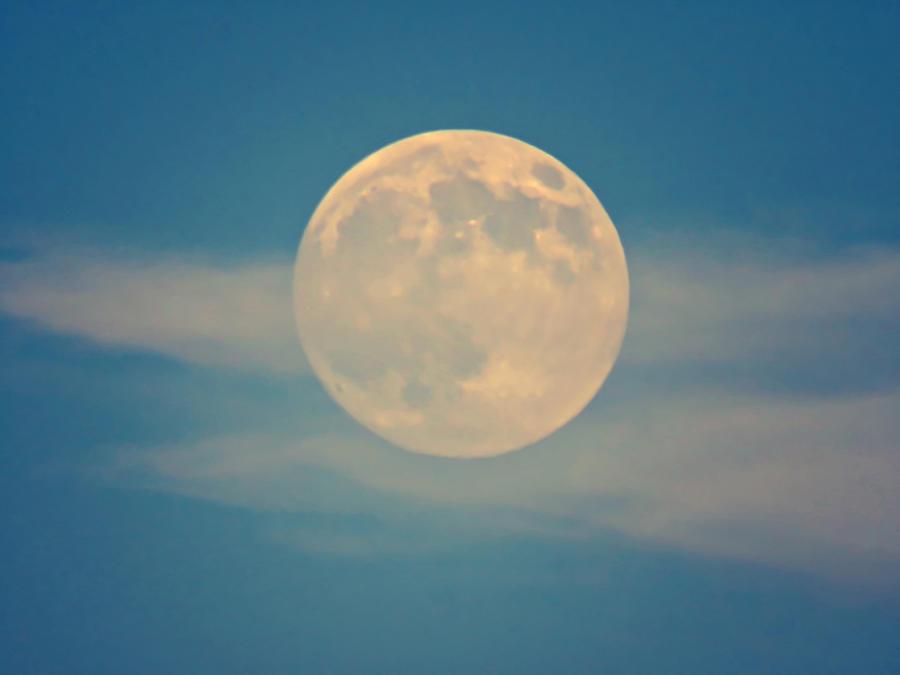 Virgo Full Moon by Judy Kennedy