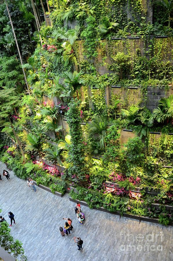 Visitors at entrance to Jewel attraction with green hanging gardens at Singapore Changi airport by Imran Ahmed