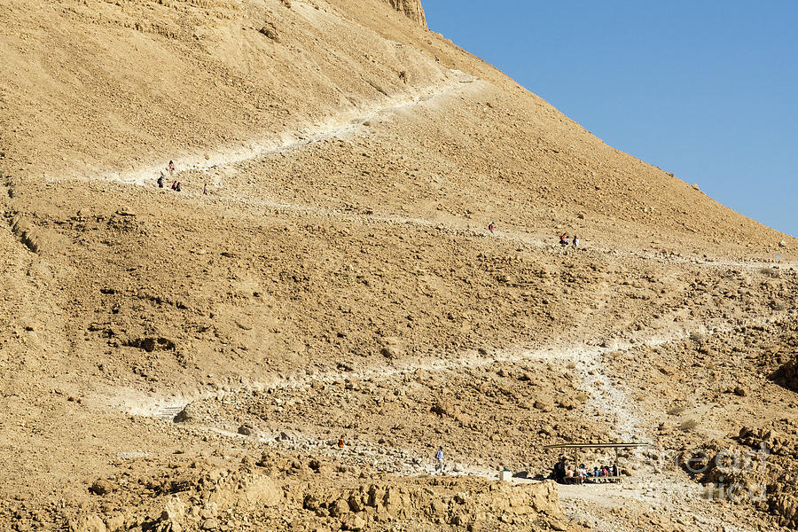 Visitors hike on the snake path on the side of Masada in Masada  by William Kuta