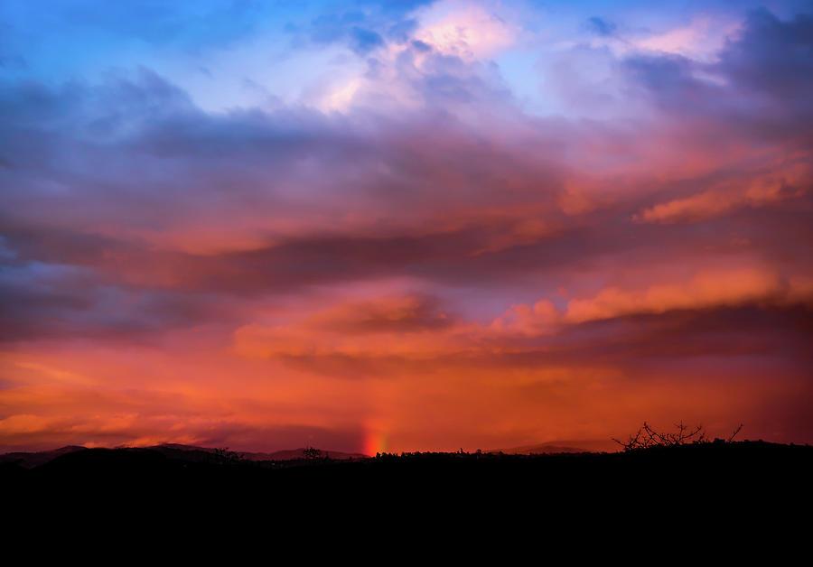 Vivid Sunset Silhouette by Robert Blandy Jr